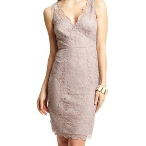 BCBG Maxazria Mid Length Lace Dress